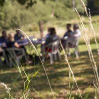 Vakantie Meerlo groepsontbijt in de natuur