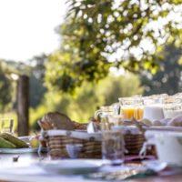 Vakantie Meerlo ontbijt in de natuur